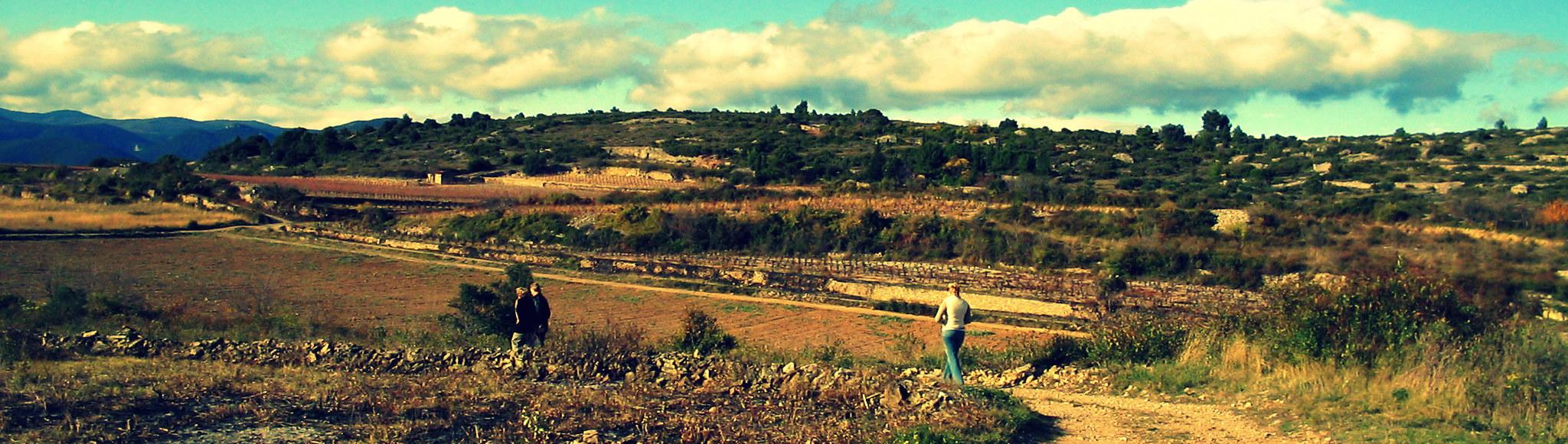 De velden rondom Cébazan